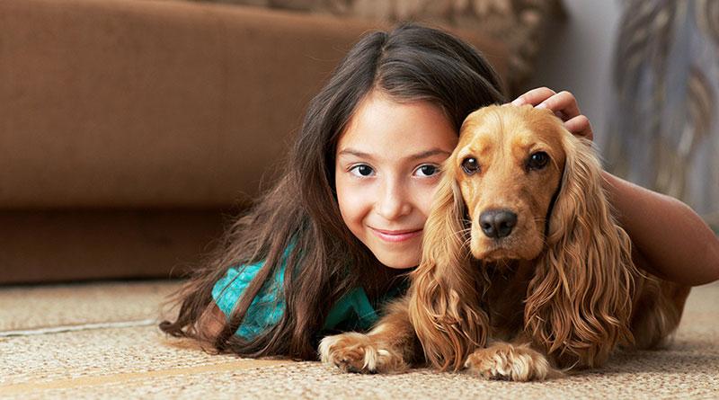 Evcil Hayvanların Çocuk Gelişimine Etkileri Nelerdir